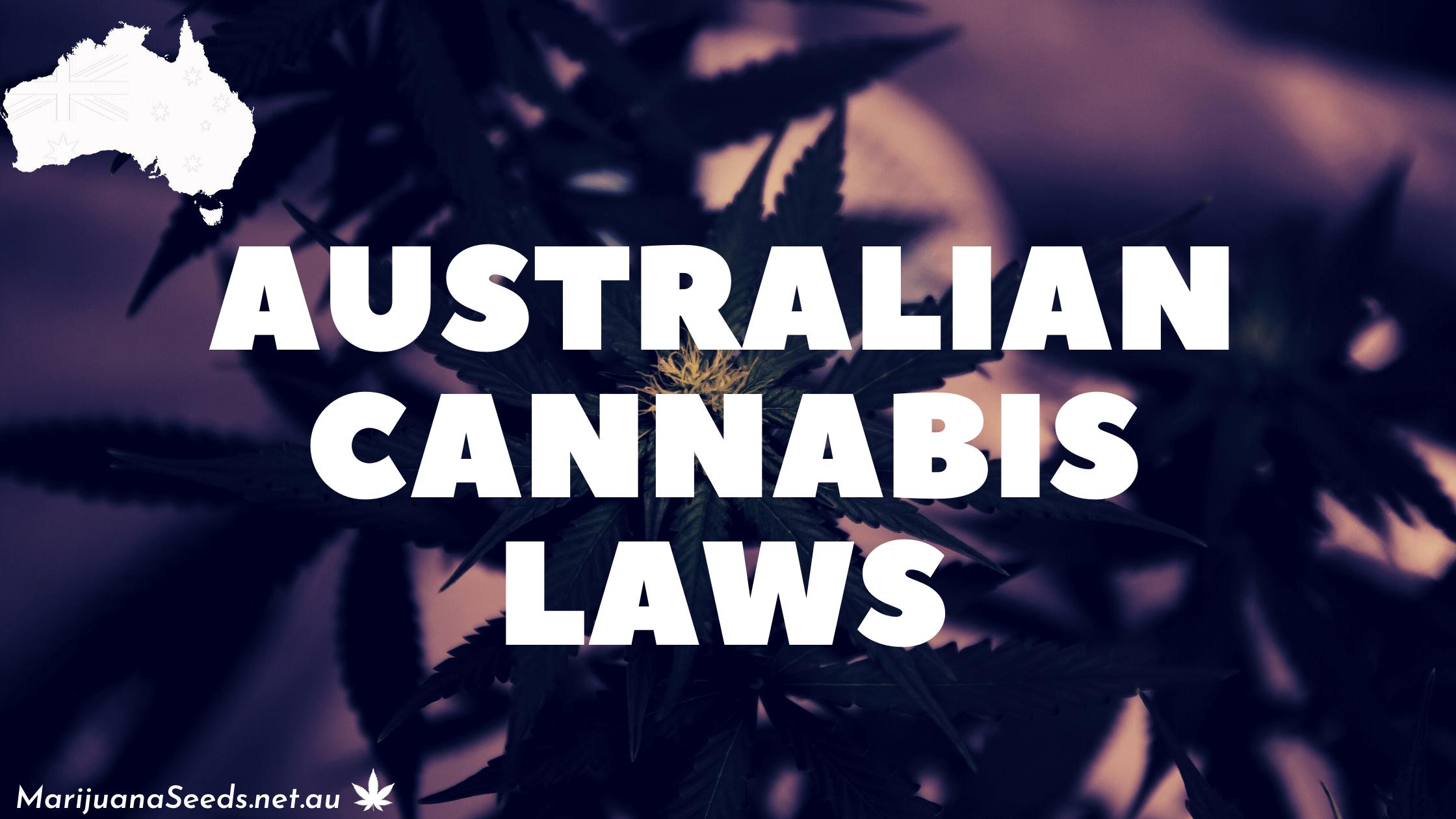 Australian-Cannabis-Laws-Banner