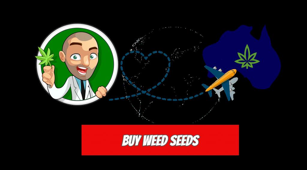 outdoor grow weed seeds