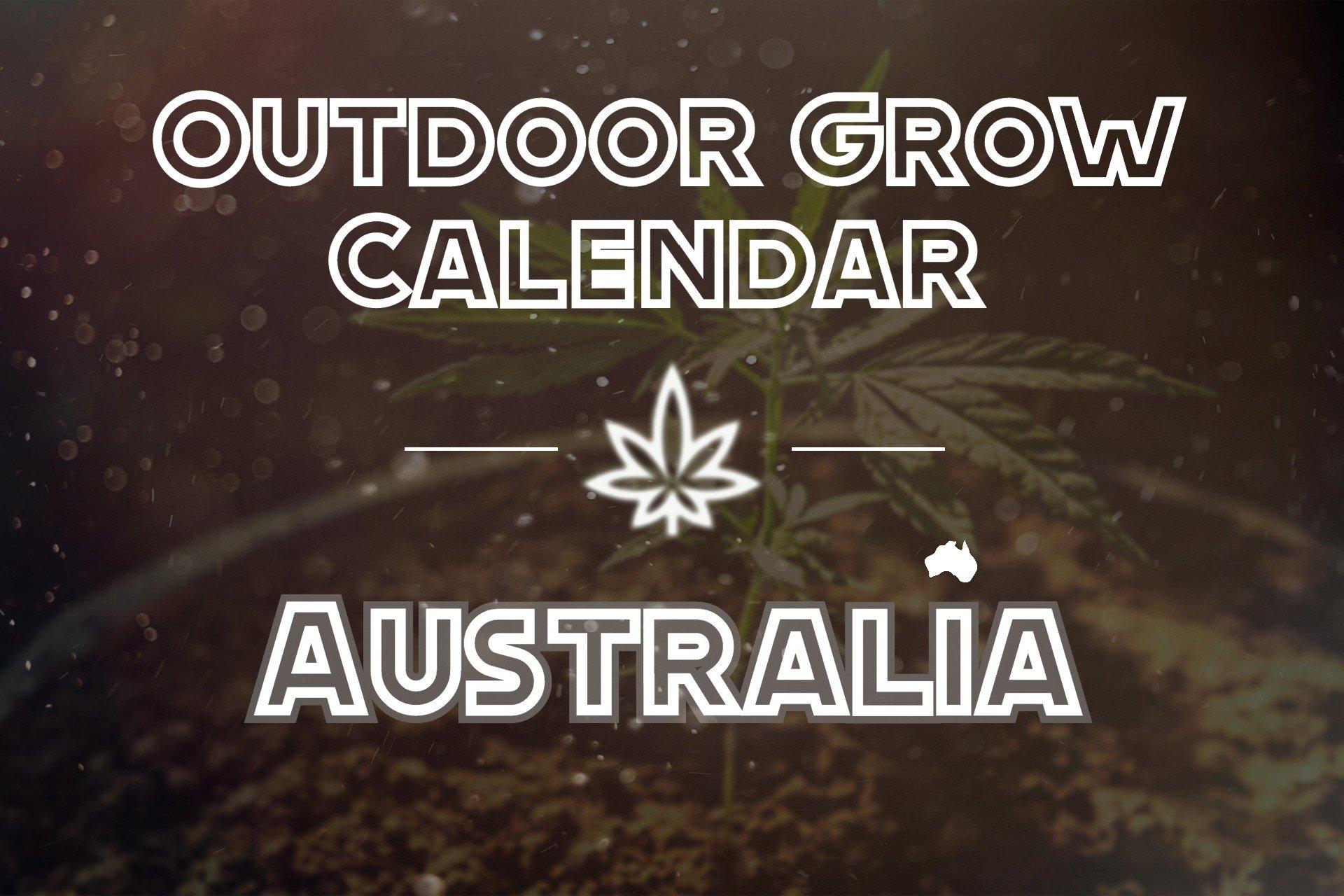 Outdoor Grow Calendar Australia