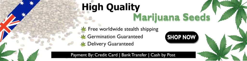 high quality marijuana seeds