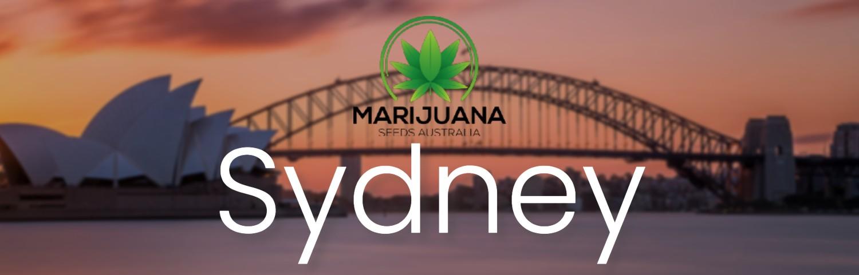 Sydney weed seeds